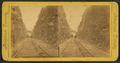 L. & S. R. R. (Lehigh & Susquehana Railroad) - cut, Mauch Chunk, from Robert N. Dennis collection of stereoscopic views.png
