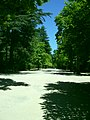 LA GRANJA DE SAN ILDEFONSO JARDIN - panoramio - Concepcion AMAT ORTA… (7).jpg