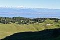 La Dôle - panoramio (30).jpg