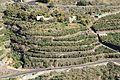 La Palma - Los Llanos - LP-1 + Barranco de Las Angustias (LP-1 in Tijarafe) 01 ies.jpg