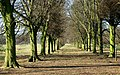 Lady Spencer's Walk - geograph.org.uk - 803610.jpg