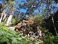 Lake Cave @ Margaret River (4450554356).jpg