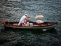 Lake Como - Dog taxi (5142343315).jpg