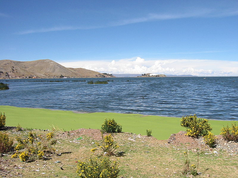 Archivo:Lake Titicaca near Puno.JPG