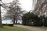 Lake Zurich - panoramio (42).jpg