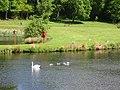 Lake at Callendar House Falkirk - geograph.org.uk - 248323.jpg