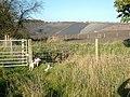 Landfill - geograph.org.uk - 282348.jpg