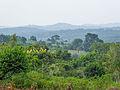 Landscape at Mbazzi 01.jpg
