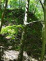 Landschaftsschutzgebiet Gestorfer Lößhügel - Steinbruch (5).JPG
