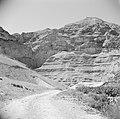 Landschap in de omgeving van Jericho. Op achtergrond de Wadi el Kelt met het St., Bestanddeelnr 255-5606.jpg