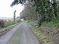 Lane at Western edge of Sangrado's Wood. - geograph.org.uk - 303701.jpg
