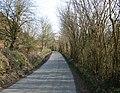 Lane between Rhydycroesau and Cefn Canol - geograph.org.uk - 386261.jpg