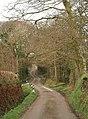 Lane near Trevell - geograph.org.uk - 709991.jpg