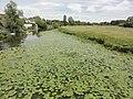 Le Chevain (Sarthe) La Sarthe.jpg