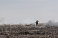 Lead in the air - live-fire exercise in Ukraine 170316-A-RH707-845.jpg
