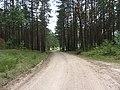 Leipalingio sen., Lithuania - panoramio (32).jpg