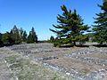 Libarna (Serravalle Scrivia)-area archeologica e rinvenimenti città romana9.jpg