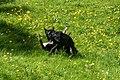 Lilo a Wesley an der Péitruss-118.jpg
