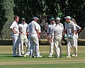 Little Hallingbury CC v. Thorley CC at Gaston Green, Essex 005.jpg