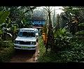 Living with the nature (explored) - Flickr - Navaneeth K N.jpg