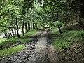 Looking back along the Waterside Walk - geograph.org.uk - 1411927.jpg