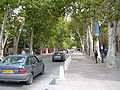Looking down the Cours Mirabeau.JPG