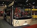 MAZ 206 in Kielce - Transexpo 2008.jpg