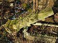 MOs810 WG 2017 2 (Notec Polder) (Herburtowo, old evang. cemetery) (5).jpg