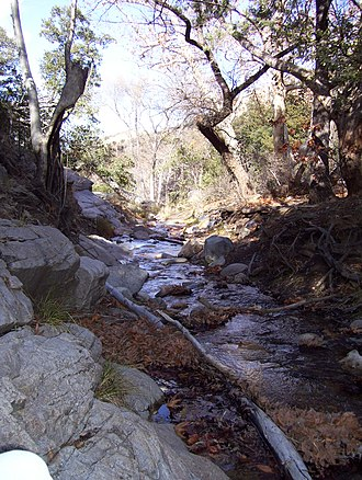 Madera Canyon - Image: Madera Canyon creek Arizona 2012