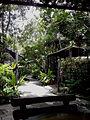 Mae Sa Orchid Farm - Thailand 2013 2768.jpg