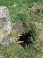 Maes-y-mynydd (7) - geograph.org.uk - 1263318.jpg