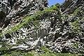 Magmatische Gesteinsformationen im Val de Courre, Monts Dore, Auvergne VI.jpg