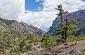 Marsyangdi valley near Humde - Annapurna Circuit, Nepal - panoramio.jpg