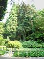 Maya natural observation garden01p2048.jpg