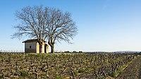 Mazet in vineyards, Mèze cf02.jpg