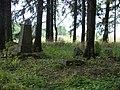 Mediņmuižas kapi - panoramio.jpg