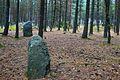 Megaliths in Węsiory, Pommerian (8).JPG