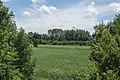 Mertingen Druisheim Moorwiese Süd 02.jpg