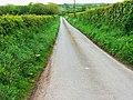 Minor road near Llwyn-y-Brain - geograph.org.uk - 1317709.jpg