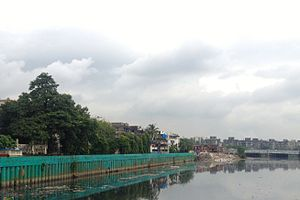 Mithi River - Mithi river in Mumbai showing the concrete pillars used in increasing its width