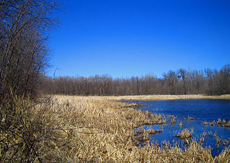 Climate of Minnesota - A Minnesota wetland during the month of April