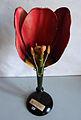 Modell der Blüte von Tulipa gesneriana (Garten-Tulpe) -Osterloh Nr. 124-.jpg