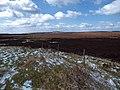 Moorland scene from Ringinglow Road - geograph.org.uk - 733508.jpg