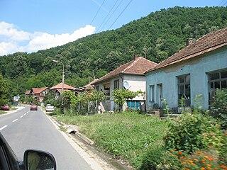 Mosna (Majdanpek)