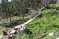 Mount Eitan IMG 2723.JPG