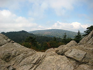 Taylors Valley, Virginia - Taylors Valley is located within the Mount Rogers National Recreation Area