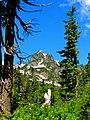 Mt. Baker-Snoqualmie National Forest (9290042651).jpg
