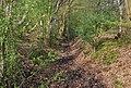 Muddy bridleway near Woodlands Farm - geograph.org.uk - 1253566.jpg
