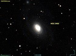 NGC 2460 DSS.jpg