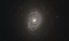 NGC 4750 HST 9788 R814 B658.png